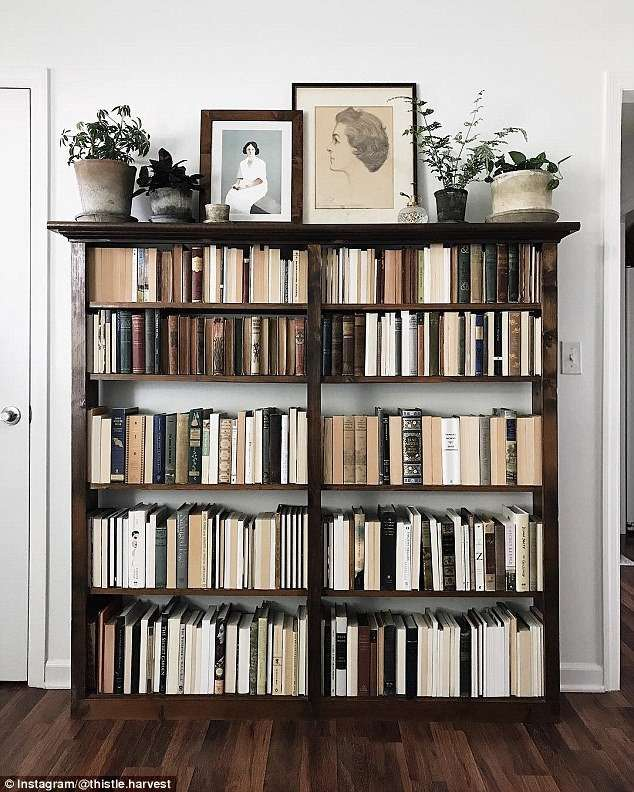 bookshelf filled with organized books