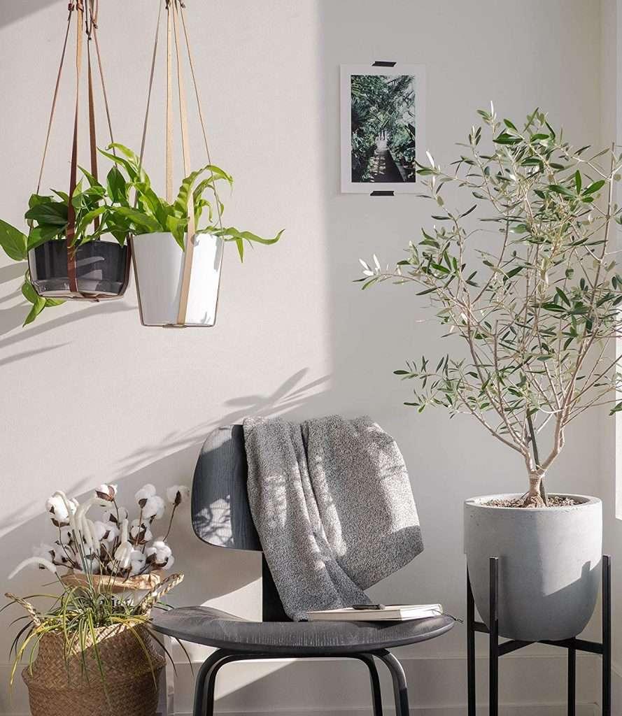 leather planter hanger
