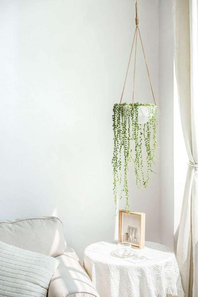 geometric ceramic hanging planter