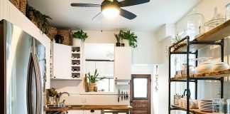 kitchen with subway tile and plants