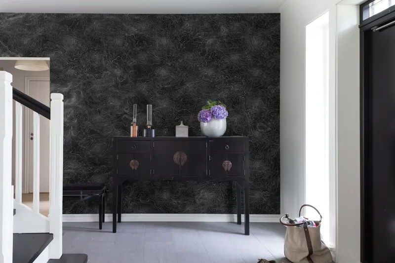 patterned elevation lines wallpaper mural in entryway